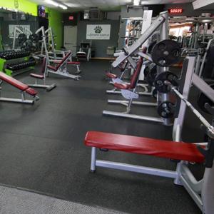 The-Fitness-Source-Big-Bear-weight-equipment
